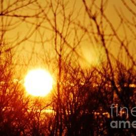 Don Baker - Morning Sun