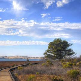 Matthew Hesser - Morro Bay Boardwalk