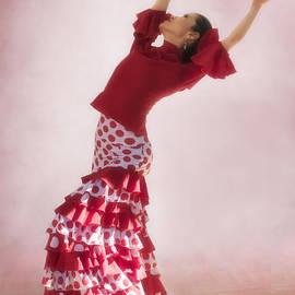 Priscilla Burgers - Mosaico Flamenco Dancer