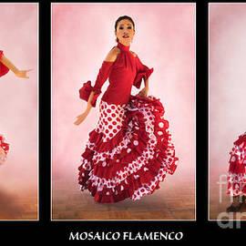 Priscilla Burgers - Mosaico Flamenco