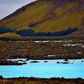 David Broome - Mossy Nordic Lagoon Vista