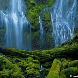 Bruce Nutting - Mossy Waterfalls