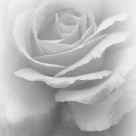 The Art Of Marilyn Ridoutt-Greene - Most Heavenly