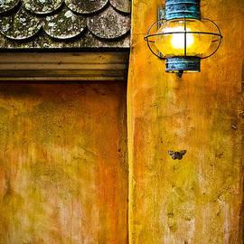 Colleen Kammerer - Moth Light