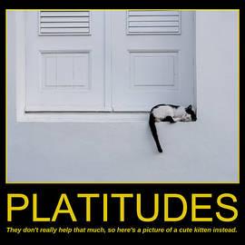 Richard Reeve - Motivational Irony - Consider the Kitten
