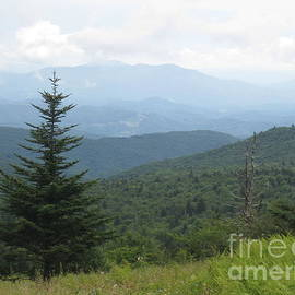 Steve Gass - Mount Rogers National Scenic Area