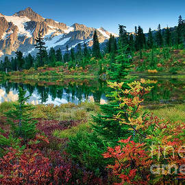 Inge Johnsson - Mount Shuksan Fall Cornucopia