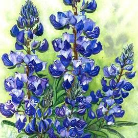 Barbara Jewell - Mountain Blues-Colorado Lupine