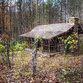 Debra and Dave Vanderlaan - Mountain Cabin