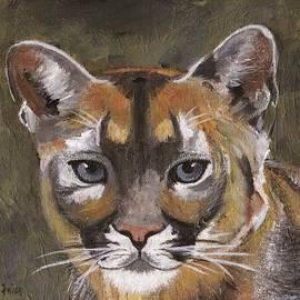 Jamie Frier - Mountain Cat