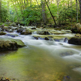 Laurinda Bowling - Mountain Flow