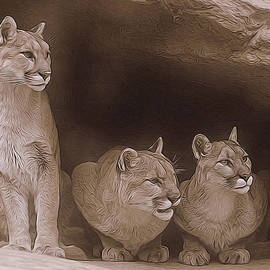 Diane Alexander - Mountain Lion Trio on Alert