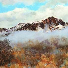 M Diane Bonaparte - Mountain Mist