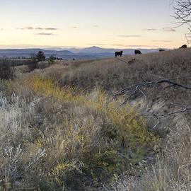 Dana Moyer - Mountain range in Montana