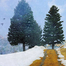 R christopher Vest - Mountain Road With Melting Snow