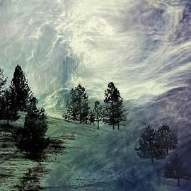 Athala Carole Bruckner - Mountain View