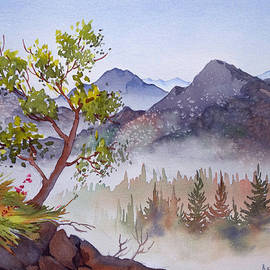 Teresa Ascone - Mountains and Woodland