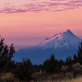 Angie Vogel - Mt Hood at Sunset