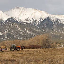 Aaron Spong - Mt. Princeton Farmer
