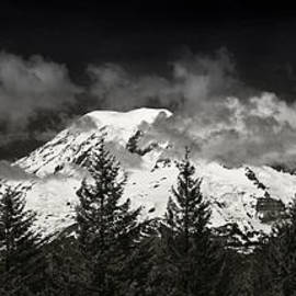Steve Gadomski - Mt Rainier Panorama B W