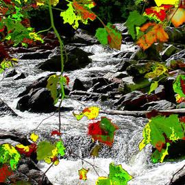 Deb Jazi Raulerson - Mtn. Falls in N.C.