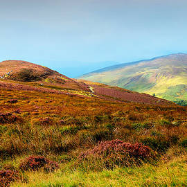 Jenny Rainbow - Multicolored Hills of Wicklow I. Ireland