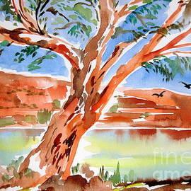Roberto Gagliardi - Murray River Australia