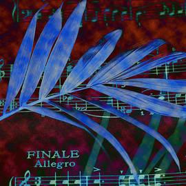 Rumyana Whitcher - Music In Colour