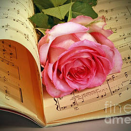Inspired Nature Photography Fine Art Photography - Musical Rose