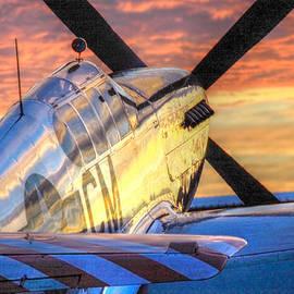 Howard Markel - Mustang Morning
