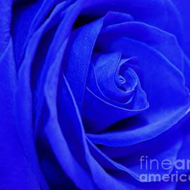 Krissy Katsimbras - My Blue Valentine