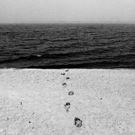 Dustin Werbeski - My Last Winter Walk