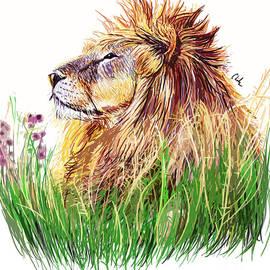 Chelsea Perez - My Lion