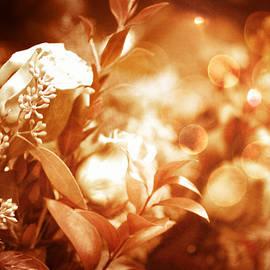 EricaMaxine  Price - My Love is Golden