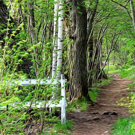 Auntieblues - My path