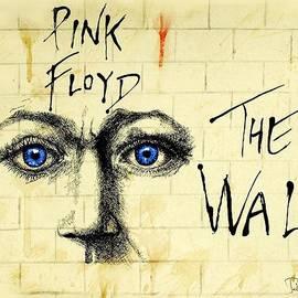 Todd Spaur - My Pink Floyd Wall