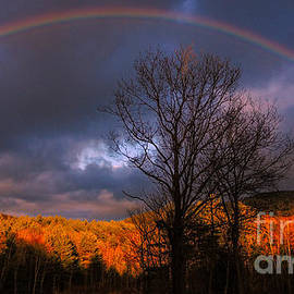 Mim White - My Rainbow