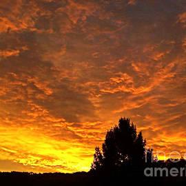 Maureen Tillman - My Sky