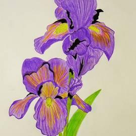 Celeste Manning - My Sweet Iris