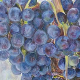 Nick Vogel - Napa Grapes 1