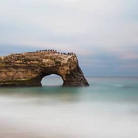 Lee Harland - Natural Bridges State Beach
