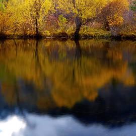 Steven Milner - Natural Reflections