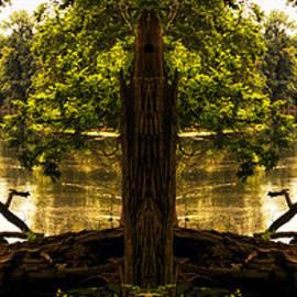Thomas Woolworth - Natural Seating Mirror Image