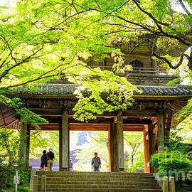 David Hill - Natural Zen - inner gateway of a Japanese forest temple