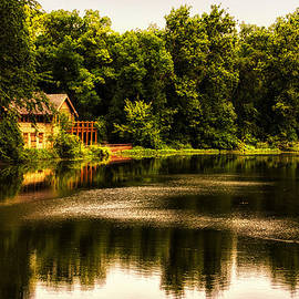 Thomas Woolworth - Nature Center Salt Creek In August