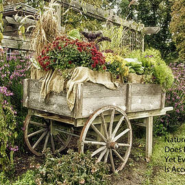 Thomas Woolworth - Nature Does Not Hurry Floral Garden Cart