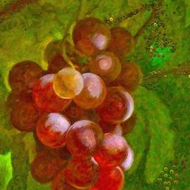 Angela A Stanton - Nature goodness grapes on the vine