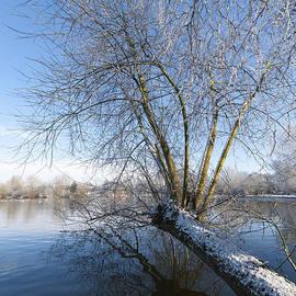 Svetlana Sewell - Nature Landscape