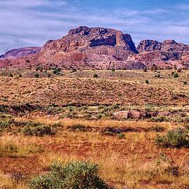 Bob and Nadine Johnston - Navajo Nation Series 2