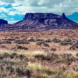 Bob and Nadine Johnston - Navajo Reservation Series 1